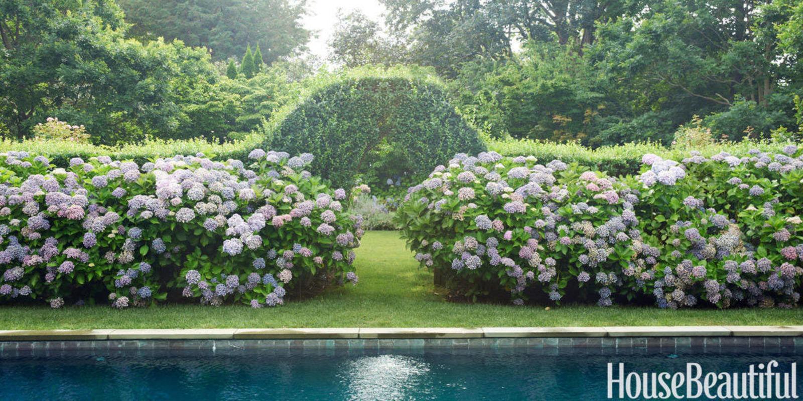 gardens benefit dementia patients health benefits of gardens