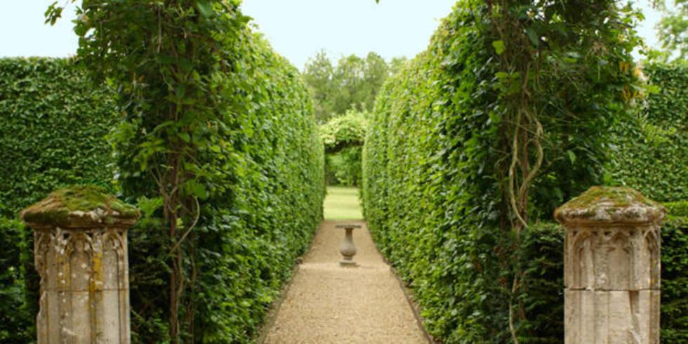Sylvain Levy Alban French Garden Monastery Garden France