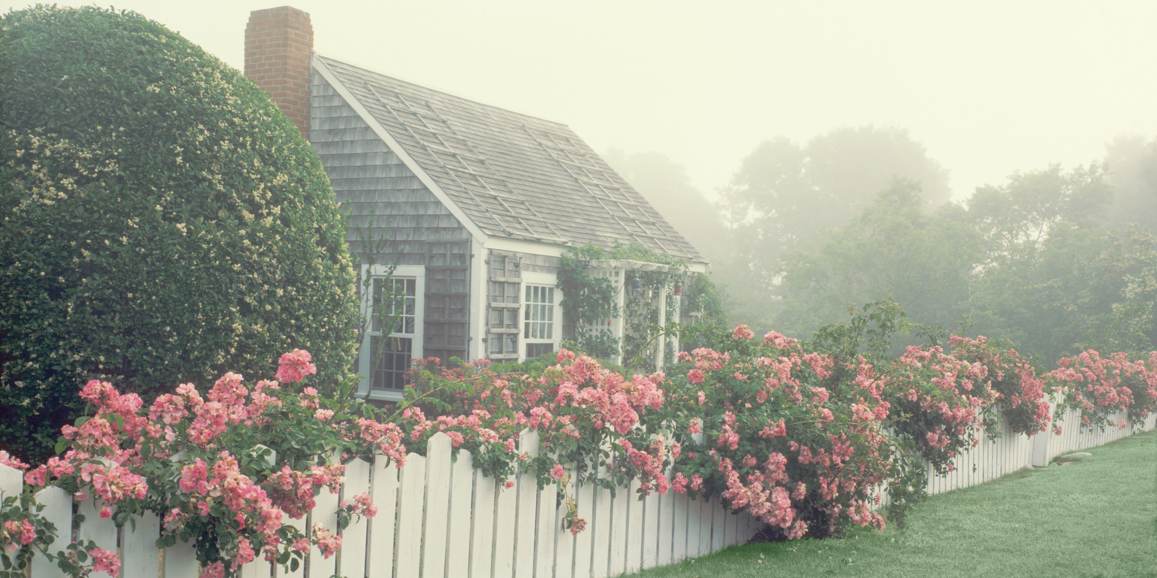 Beautiful floral landscapes the most gorgeous floral for Photos cottages anglais