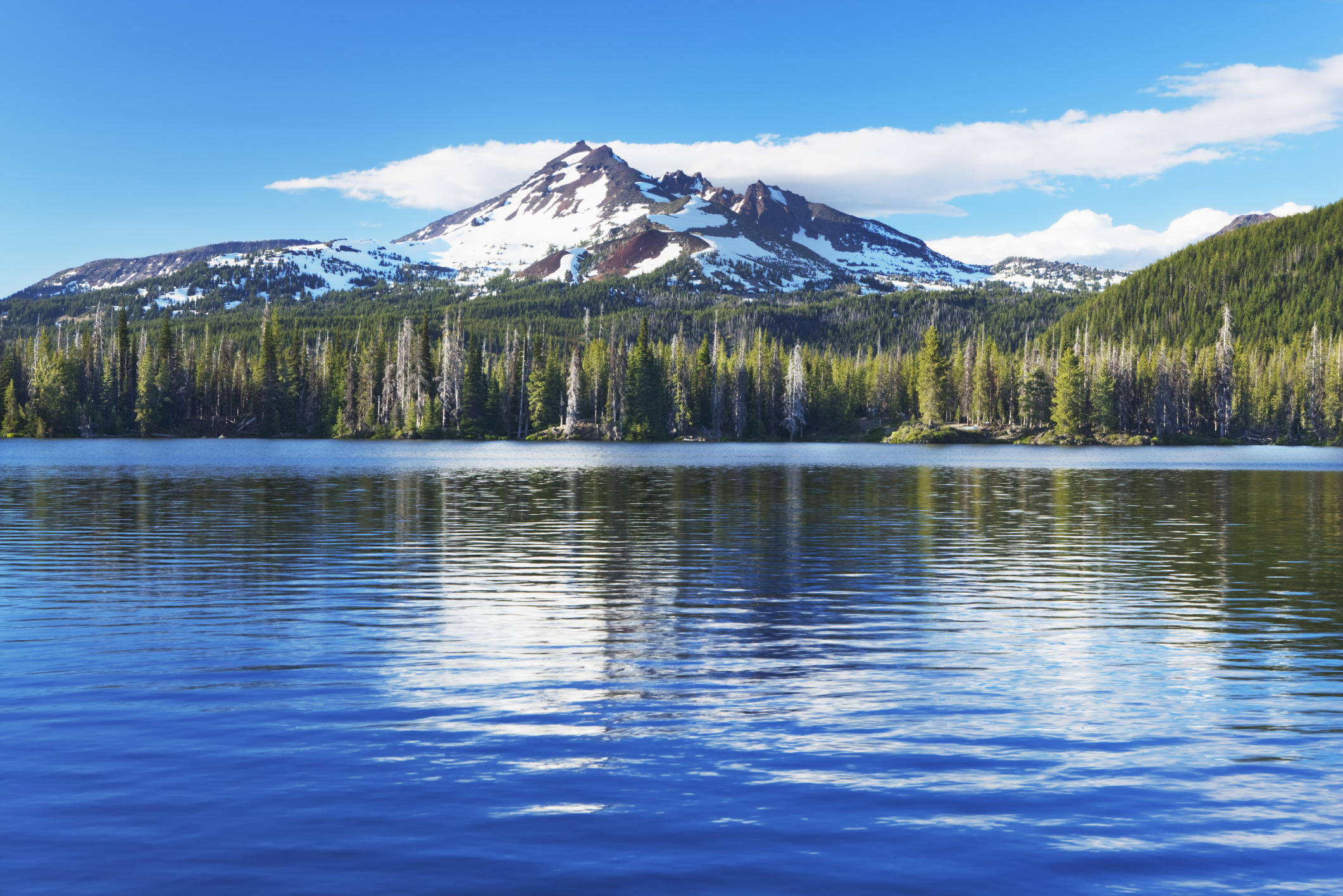 Most Beautiful Forests In America Most Beautiful